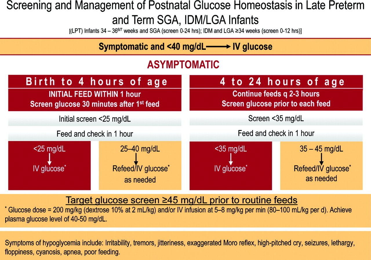 Image Result For Neonatal Hypoglycemia