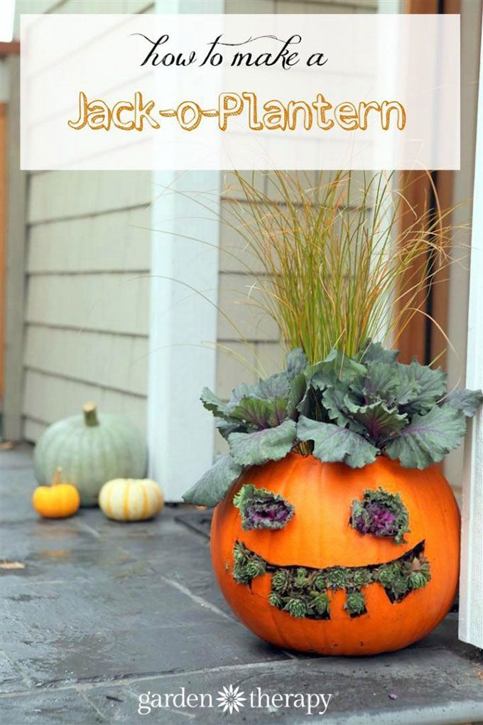 DIY Scarecrow Ideas For Fall Scarecrow ideas, Scary scarecrow and - halloween scarecrow ideas
