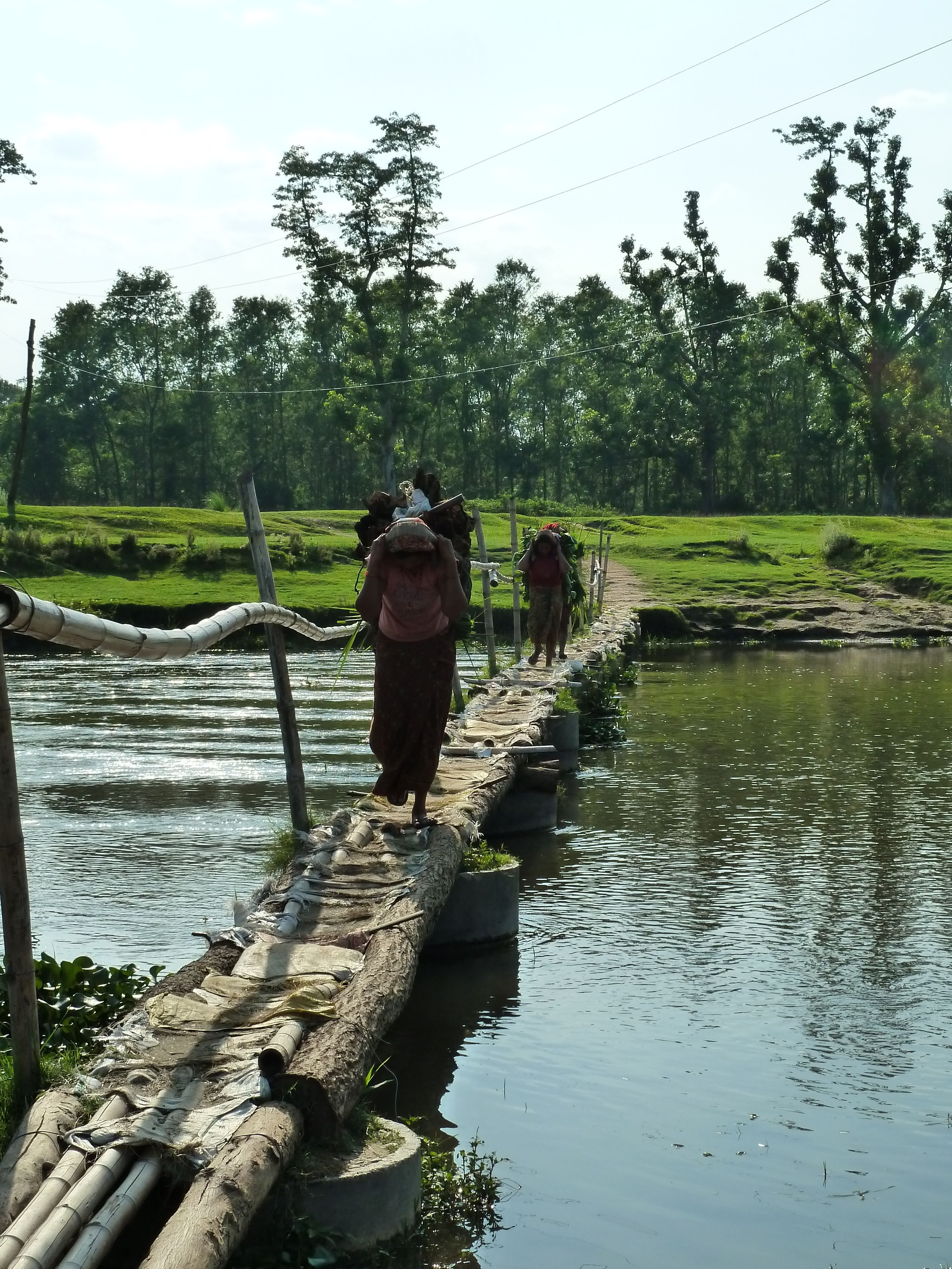 Chitwan National Park, Nepal. Chitwan National Park is the
