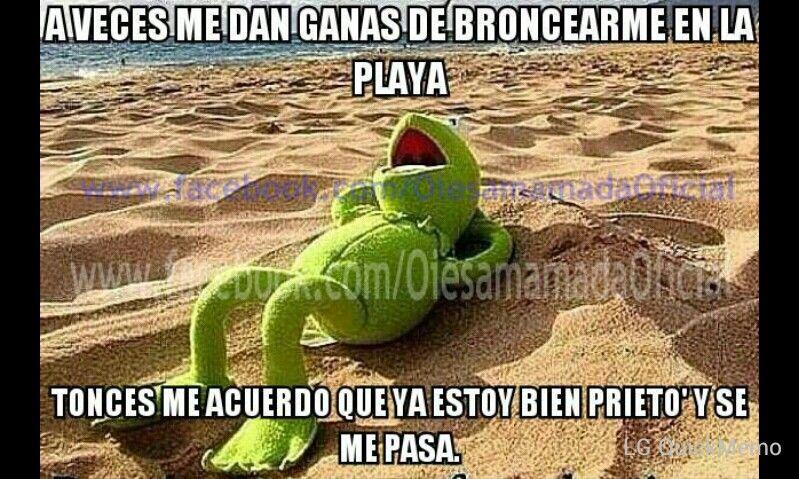 A Veces Me Dan Ganas De Broncearme En La Playa Frases De Buen Humor Memes Graciosos Para Whatsapp Memes De La Rana