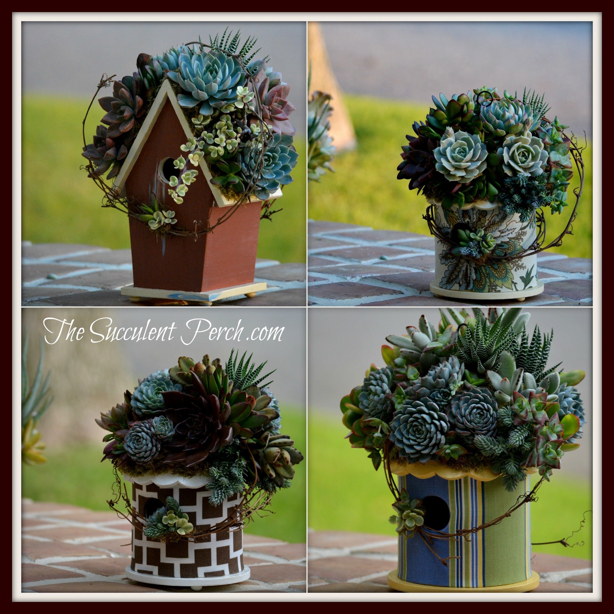 A few of the Succulent Rooftop Birdhouses shipped out throughout the Continental US for Christmas gifts~ www.thesucculentperch.com