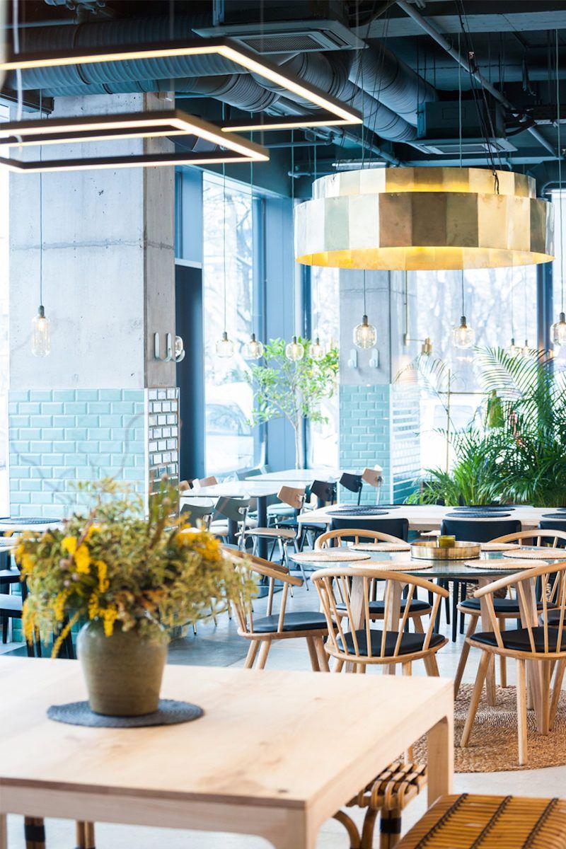 Kane world food studio bucharest modern restaurant