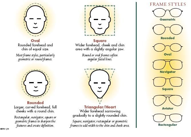 The Shape Of Your Head