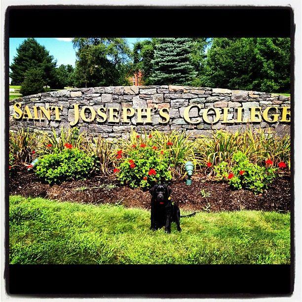 St Joseph S College Of Maine Saint Joseph College St Joseph St Joesph