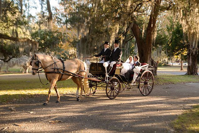 Horse And Carriage At A Southern Holiday Wedding
