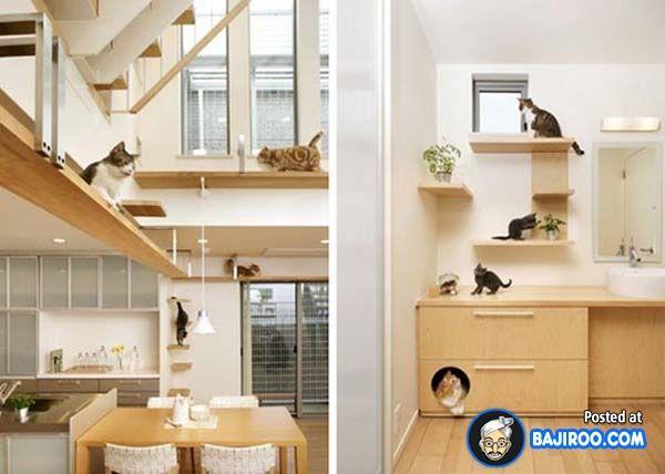 Amazing Creative Unusual Pets Friendly Furniture Designs Interionr Ideas  Pics Images Pictures Photos 23 41 Pictures