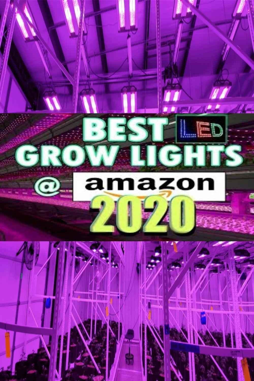 Indoor Garden Lights Amazon