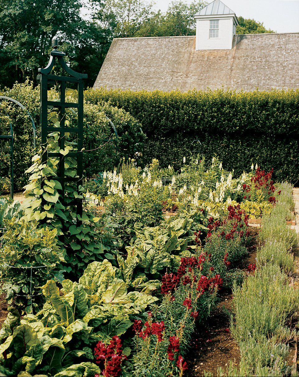 a look inside oscar de la rentas country home vegetables gardencountry