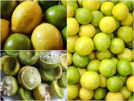 رجيم الليمون لإنقاص ٤ كيلو في الأسبوع و ١١ كيلو في الشهر Fruit Diet Lime