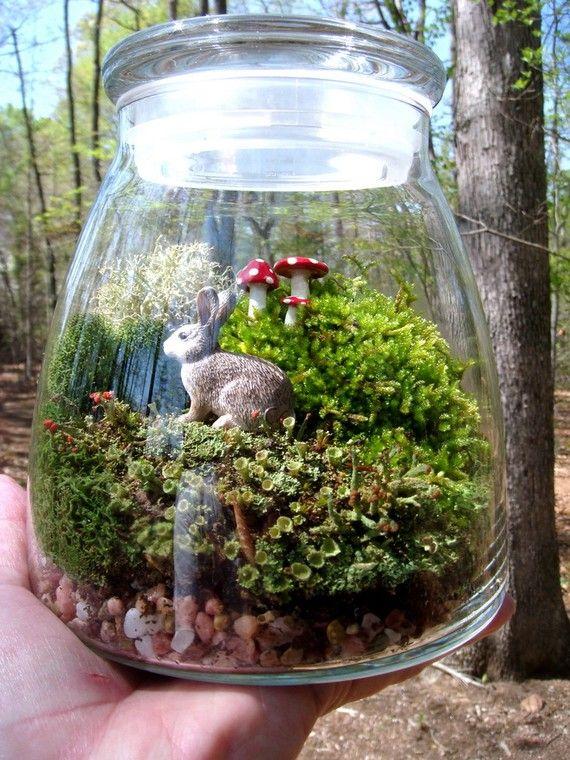 Extra Large Vibe Jar Terrarium Moss And Lichen Bunny Mushrooms