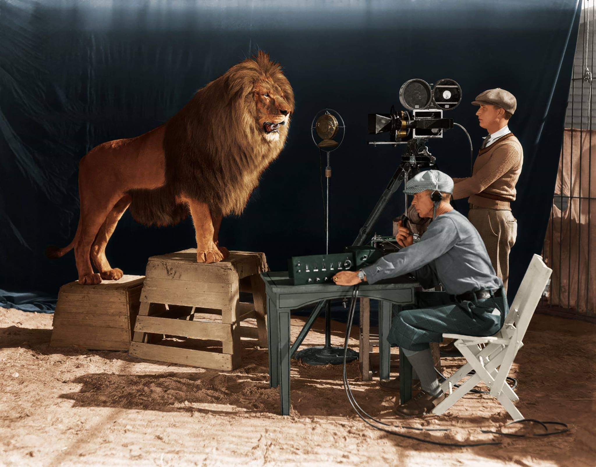 A Cameraman And Sound Technician Record The Roar Of Leo The Lion In