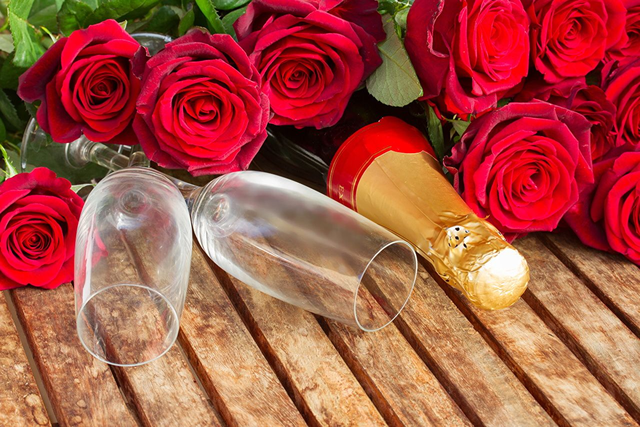 Red Shoe Flowers And Champagne Holidays Roses Champagne Red Stemware Flowers Wallpapers Pictures Stemware Holiday Roses Rose Champagne