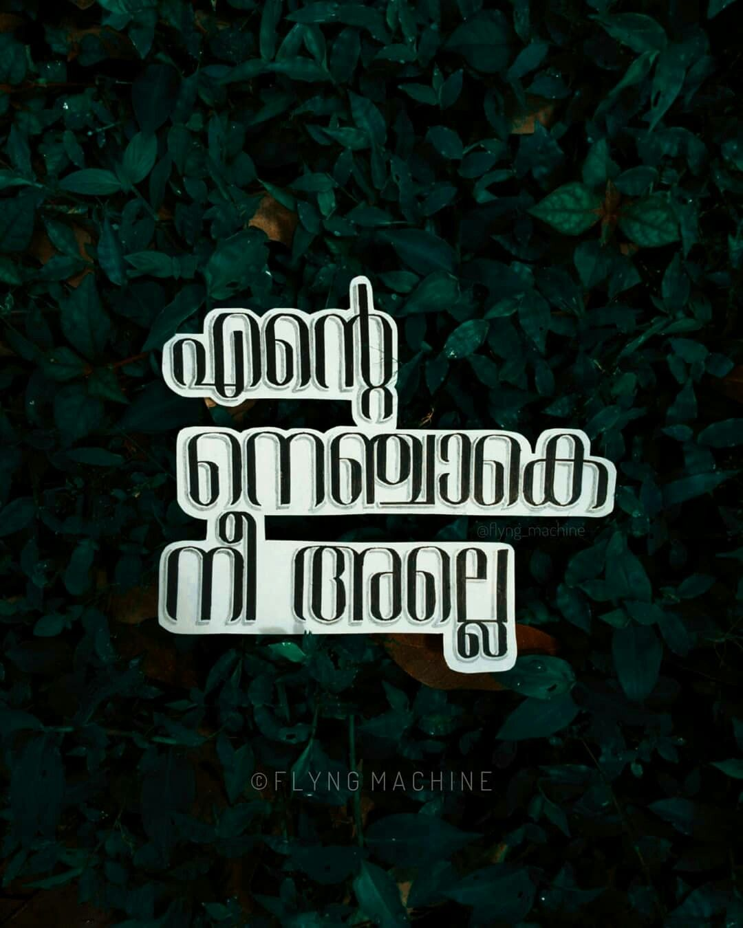 Written Walls Malayalam Quotes Movie Dialogues Picture Quotes