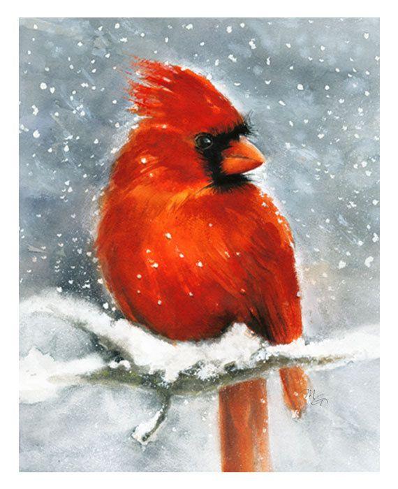 Cardinal Watercolor Giclee Print. Winter Snow Red Bird ...