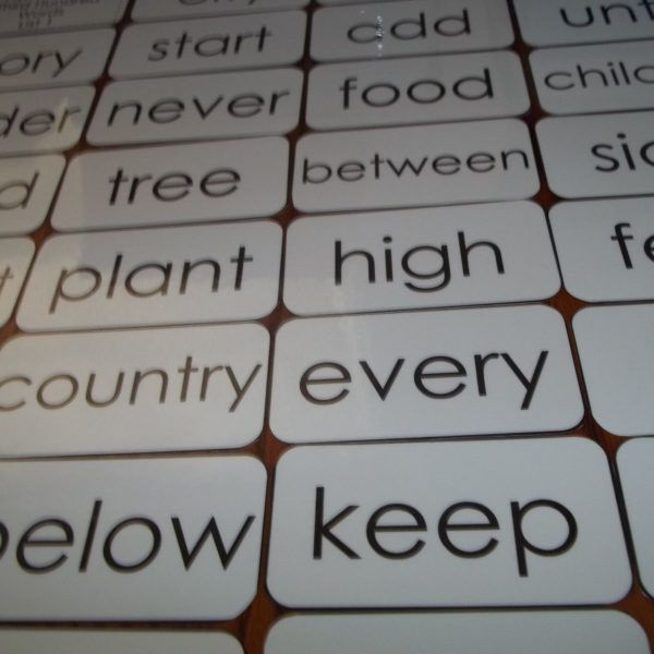Literacy 100 laminated Fry First Hundred high frequency sight word flashcards