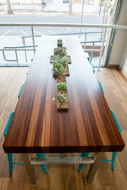 Succulent communal table by Ryan Benoit Design