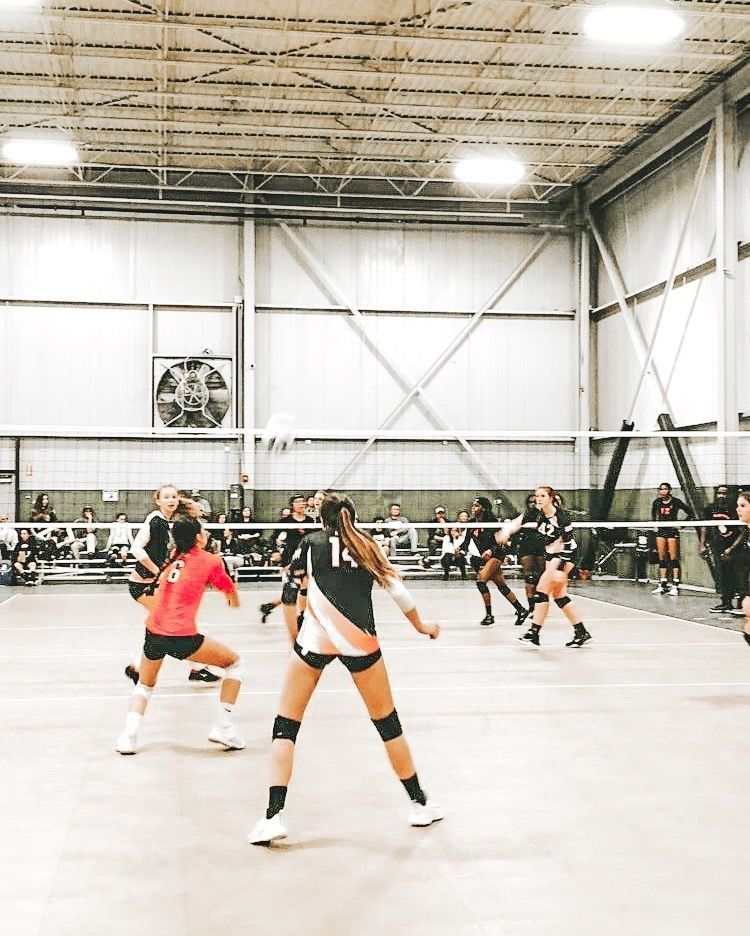 Pin By Savannah Ewing On College America Volleyball Inspiration Volleyball Pictures Volleyball Photos