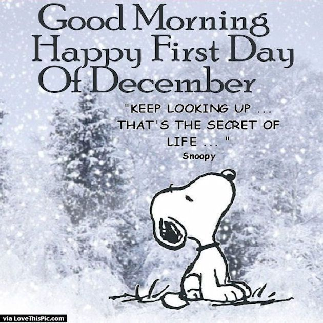Merveilleux Good Morning Happy First Day Of December Snoopy Quote · Winter QuotesWelcome  ...
