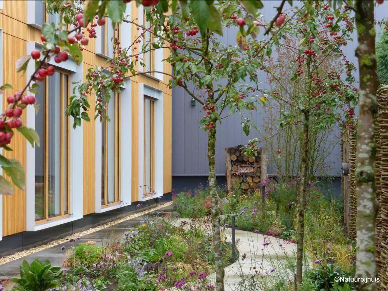 """Наиболее устойчивый офис в мире!  В 2014 году """"Природа у себя дома"""", этот экологический сад бизнес предназначен для BREEAM сертифицировано офисное здание Geelen противоионы Flow в Haelen.  Применяемая система посадки Prairiegarden® низкие эксплуатационные расходы и имеет """"не просто"""" естественный вид, потому что все растения по всей поверхности, приехав вместе.  Дизайн сада и посадки для частных и бизнеса в Лимбург.  Дизайн: www.natuurbijhuis.nl.  Фото: © октябрь 2015 Iverna Zaalberg"""