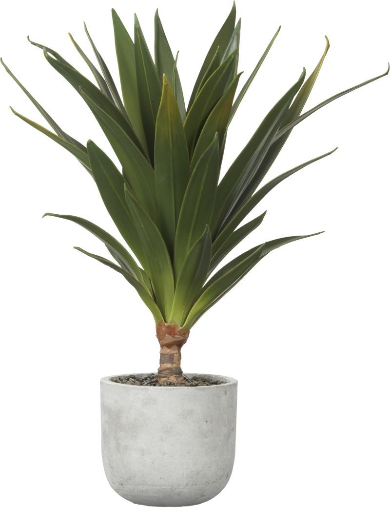 lifelike yucca plant stretches its spiky leaves in a dramatic