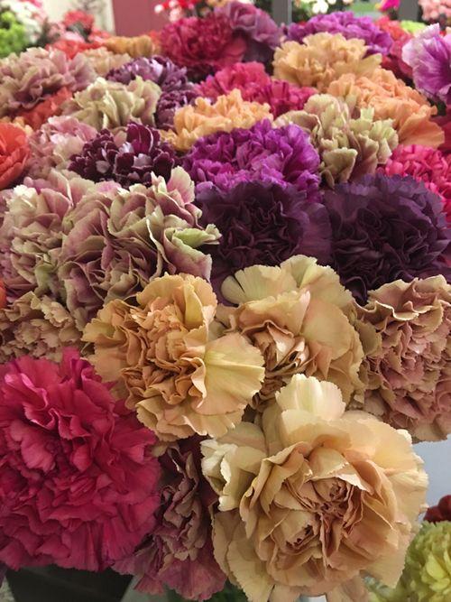Flirty Fleurs The Florist Blog Inspiration For Floral Designers Carnations Holland Flowers Flowers