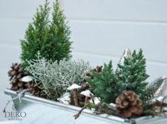 DIY: Blumenkästen für Herbst & Winter dekorieren #weihnachtsdekohauseingangaussen