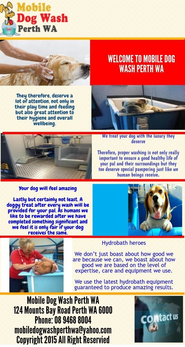 We Best Mobile Dog Wash In Wa Use The Latest Hydrobath Equipment Guaranteed To Produce Amazing Results To Get Our Services Visit Us At 1 With Images Dog Wash Hygiene Wash
