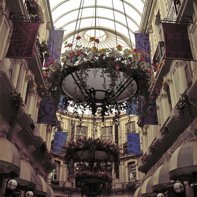 Flower Mall Cicek Pasaji Istanbul Favorite Places Spaces