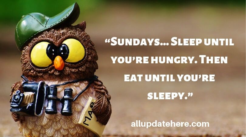 Beautiful Sunday Morning Quotes Happy Sunday Quotes Sunday Quotes Funny Sunday Humor