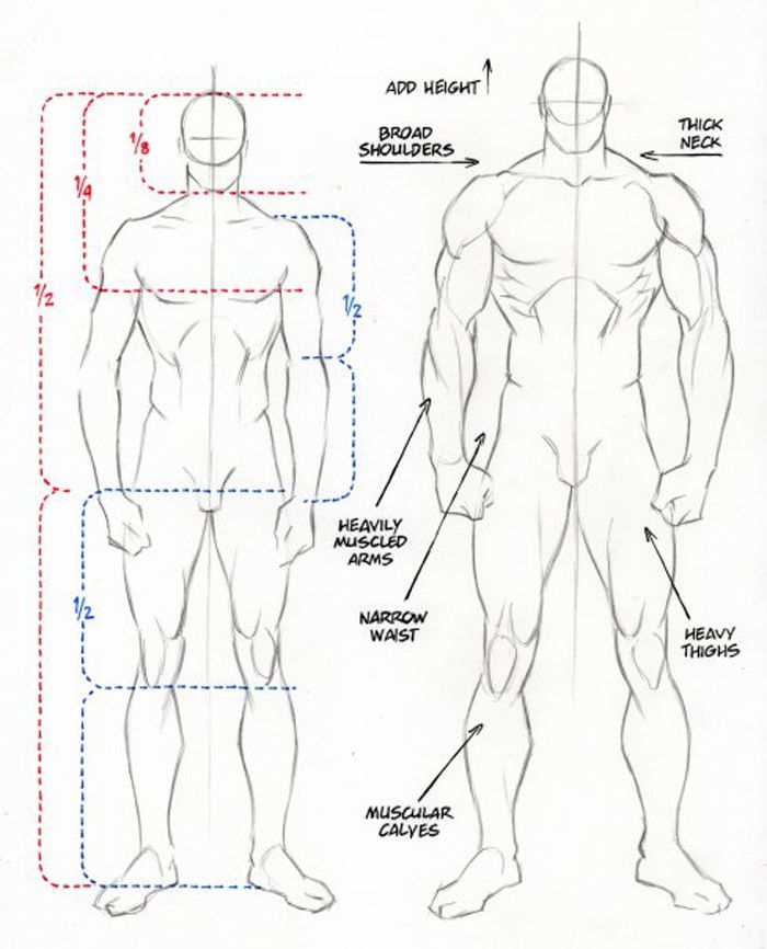 boceto hombre musculoso | male body | Pinterest | Hombre musculoso ...