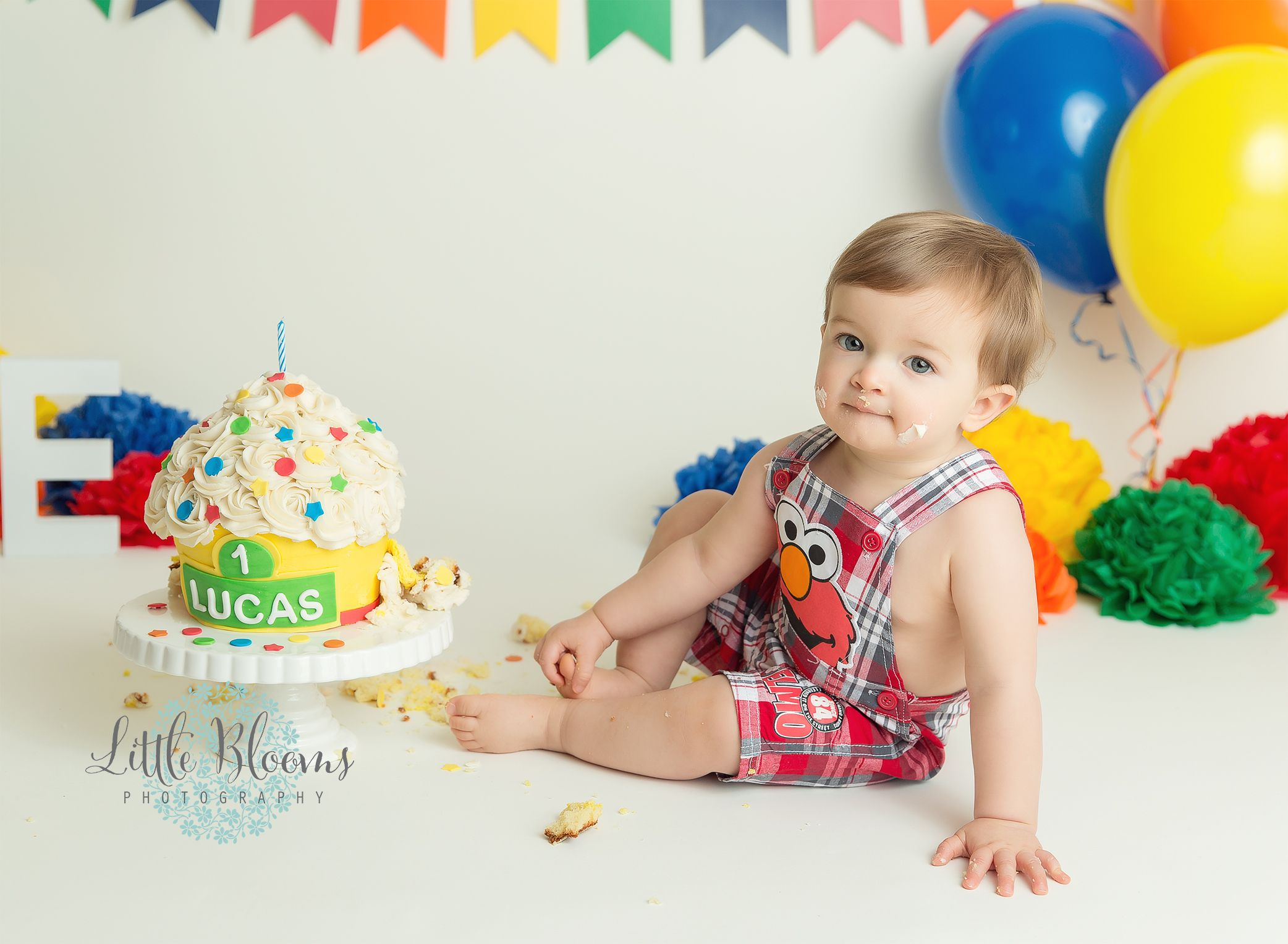 Sesame Street cake smash first birthday rainbow colors primary