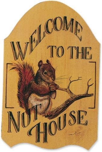 Pin By Leslie Moore Hoffman On Favs Nut House Squirrel Indoor