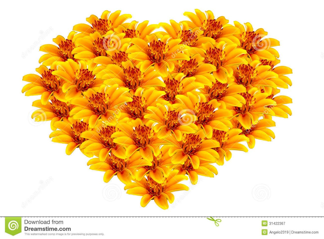 Beautiful Yellow Flowers Heart Shaped Stock Photos Images