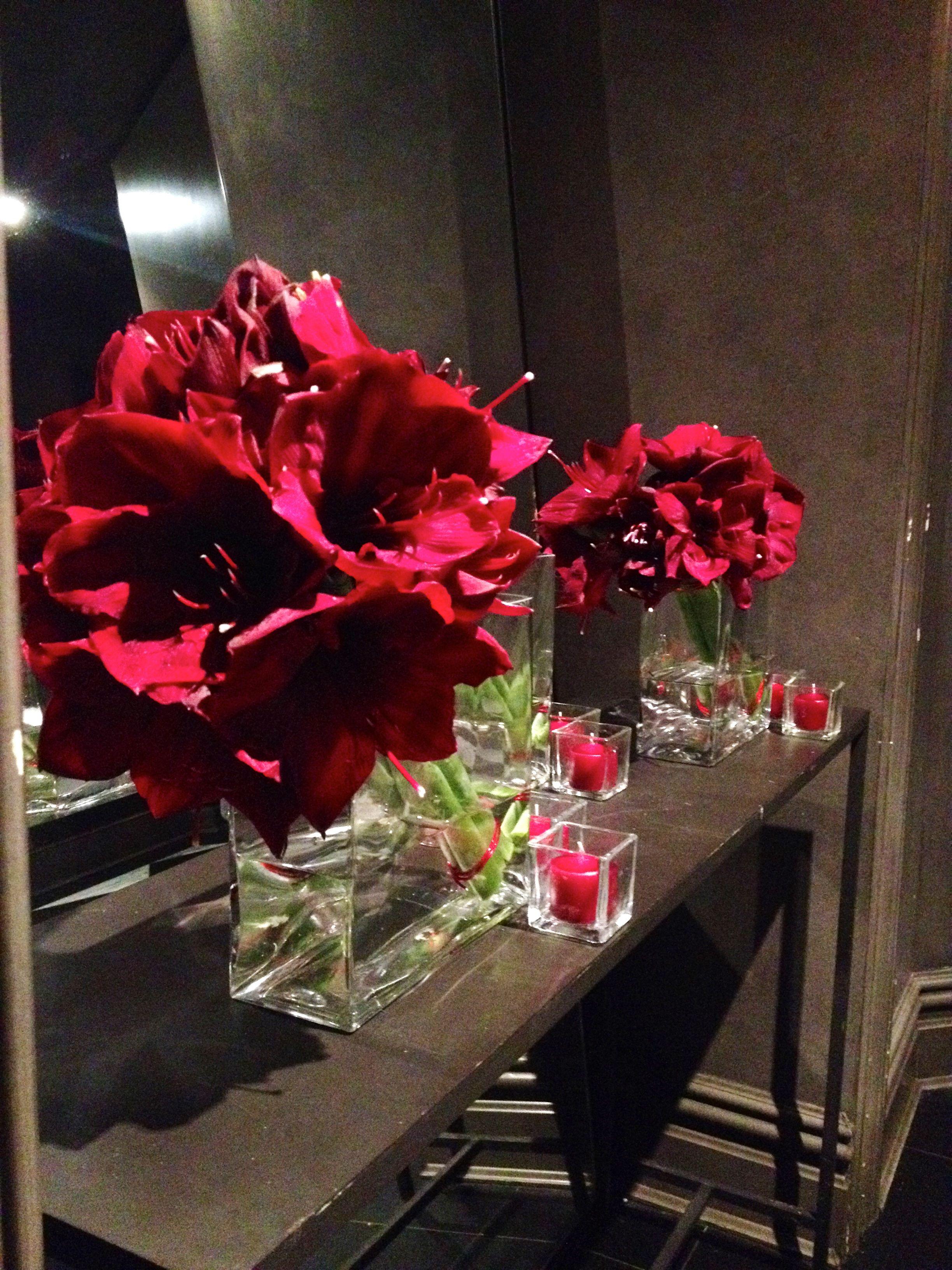 Leaning burgundy amaryllis for maybourne hotel groups private event leaning burgundy amaryllis for maybourne hotel groups private event at crown restaurant flowers of the izmirmasajfo