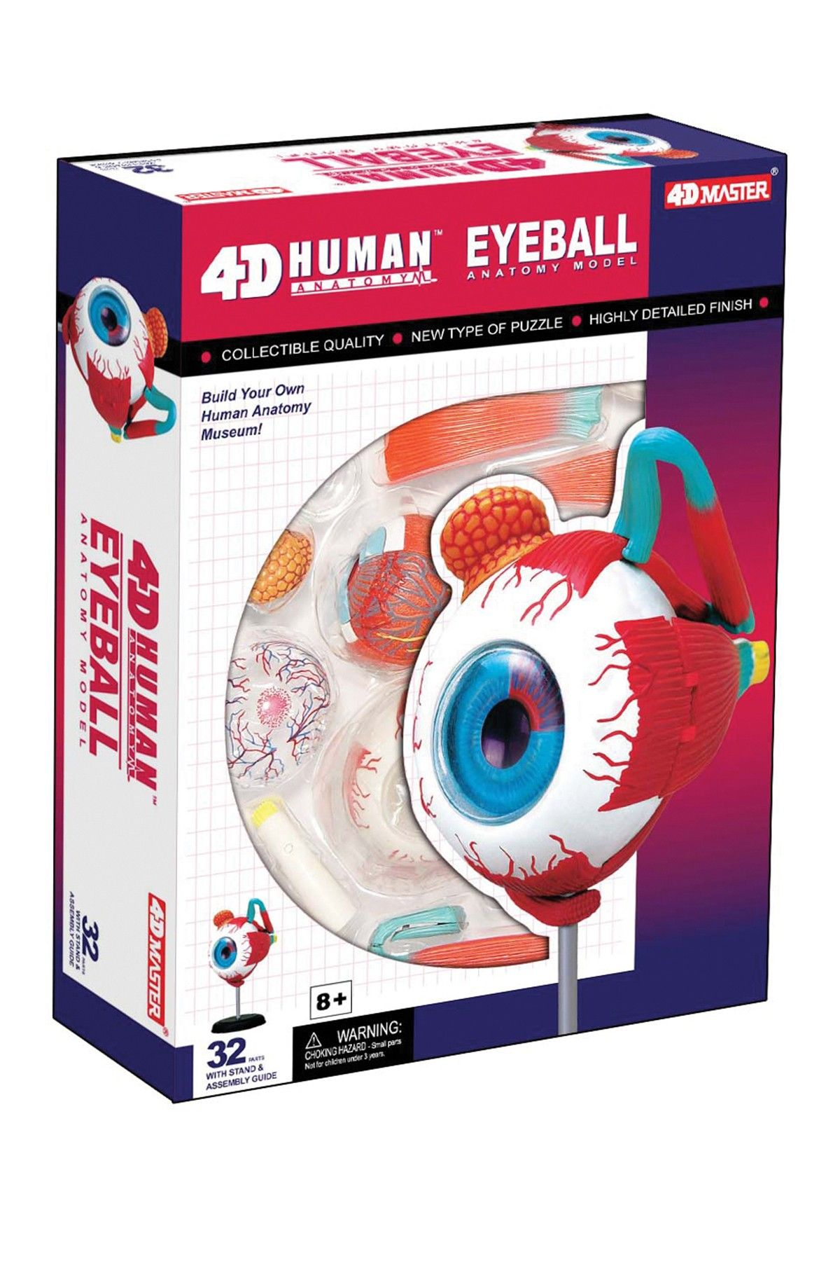 Tedco Toys 4d Human Eyeball Anatomy 32 Piece Set Kid Fashion