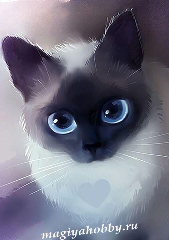 Прикольные картинки котят на аватарку, сделать свою картинку