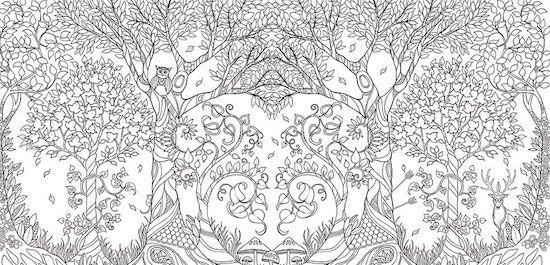 ไอเด ยเจ ง สม ดภาพระบายส สำหร บผ ใหญ ขายได กว าล านเล ม มาชมก นเลย Enchanted Forest Coloring Book Johanna Basford Coloring Book Forest Coloring Book