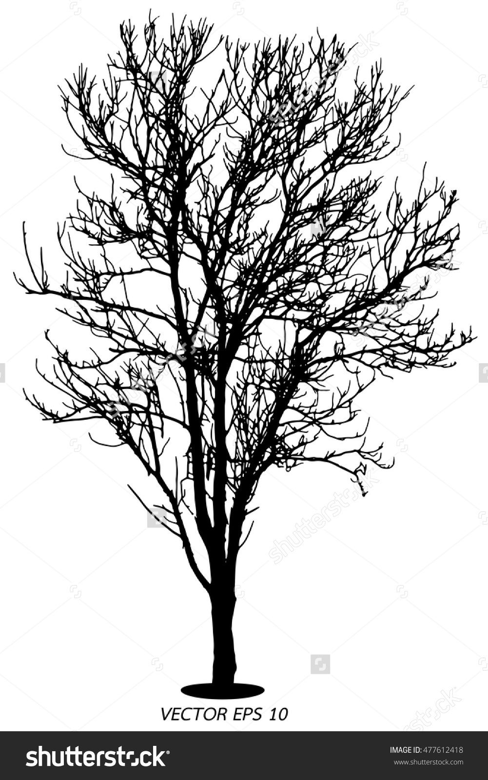 Tree Silhouette Dry Tree Or Dead Tree On White On Background Tree Dry Dead Background Silhouette White Black Tree Silhouette Dry Tree Tree Painting