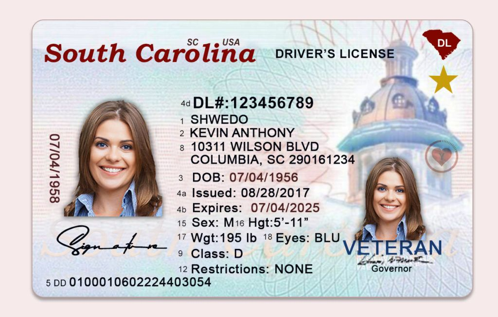 Fake driving license templates psd files in 2020