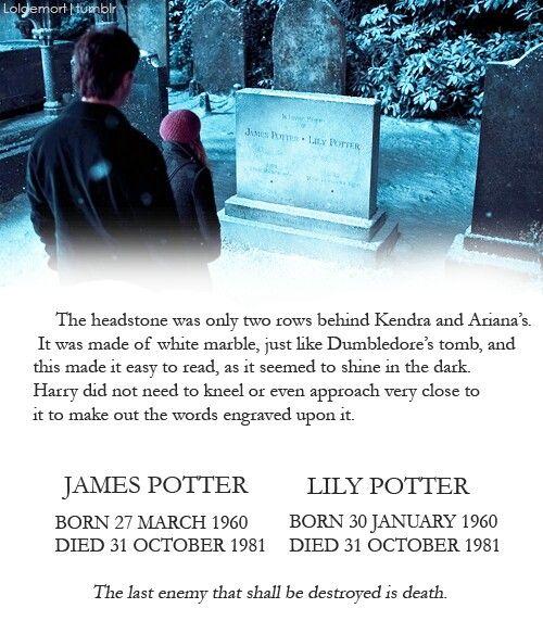 Lily And James Potter Harry James Potter James Potter Lily Potter