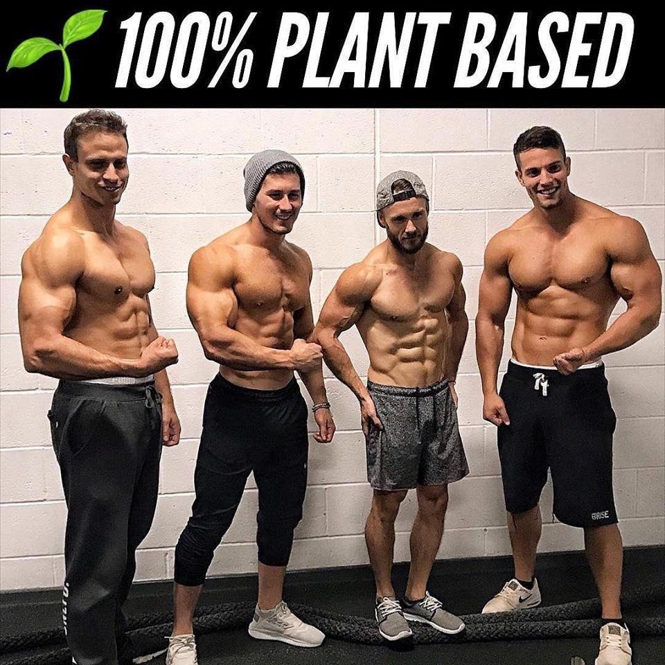 Vegan Fit Fitness On A Whole Food Plant Based Diet Veganism Vegan Bodybuilding Diet Vegan Muscle Vegan Fitness