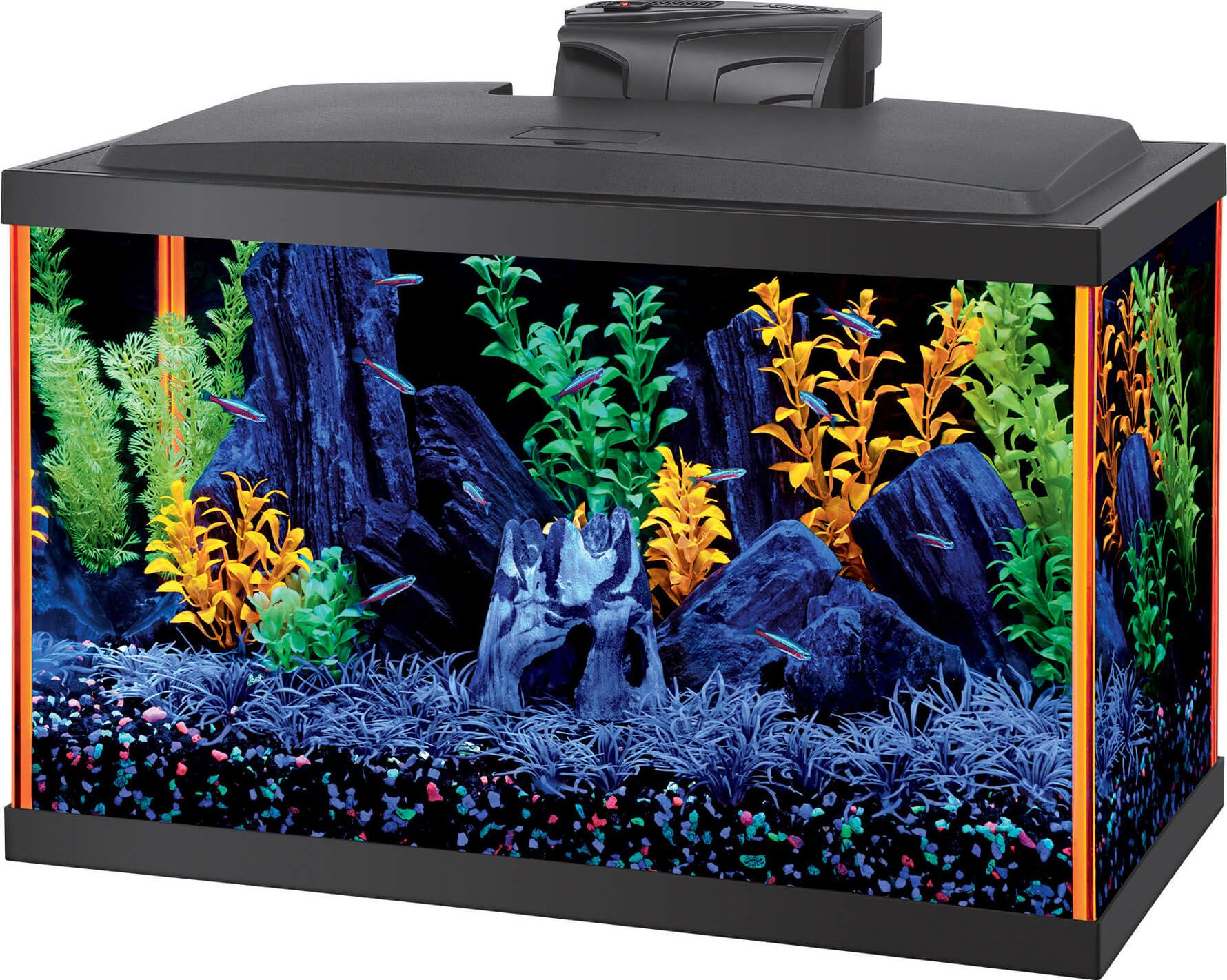 Fish Aqueon Neoglow Aquarium Kit Rectangle By Aqueon 10 Gallon In 2020 Aquarium Kit Aquarium Decorations Glass Aquarium