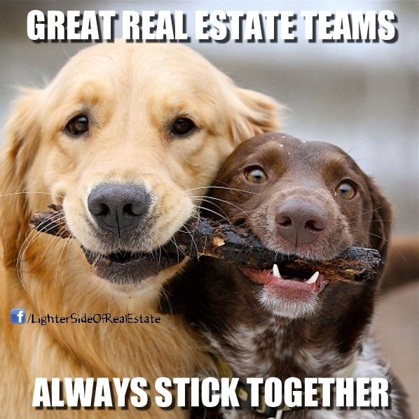 So True For Real Estate Teams With