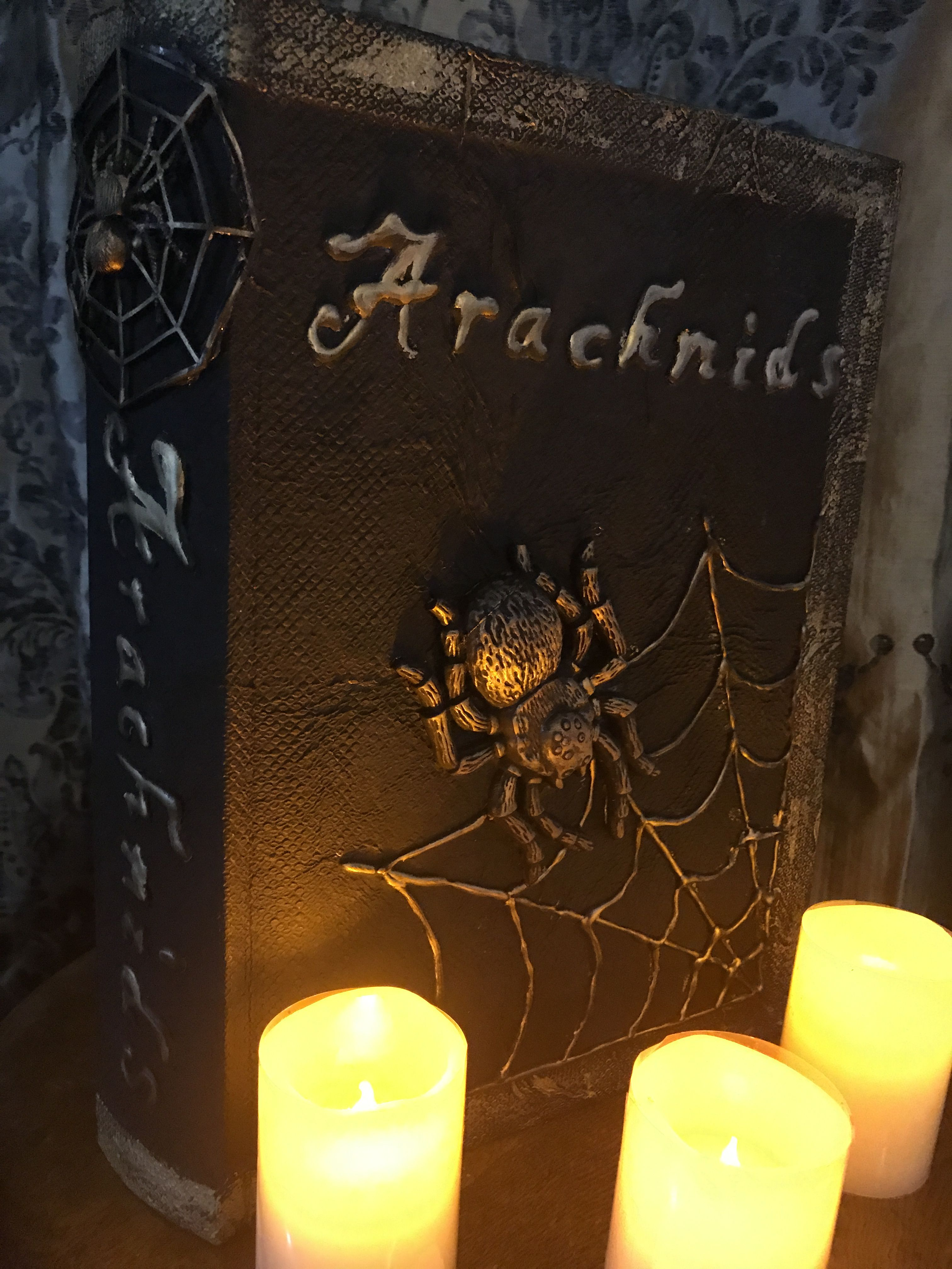 Arachnid Halloween Book. Modge Podged a paper towel over a faux book. Used a glue gun to draw the web and letters. Glued a rubber spider to the front. Painted all black then used gold Rub n Buff to highlight