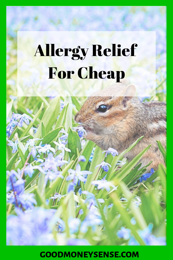 The Biggest Savings On Allergy Relief Medications For Spring 2020 Spring Allergies Watery Eyes Spring Allergy Relief