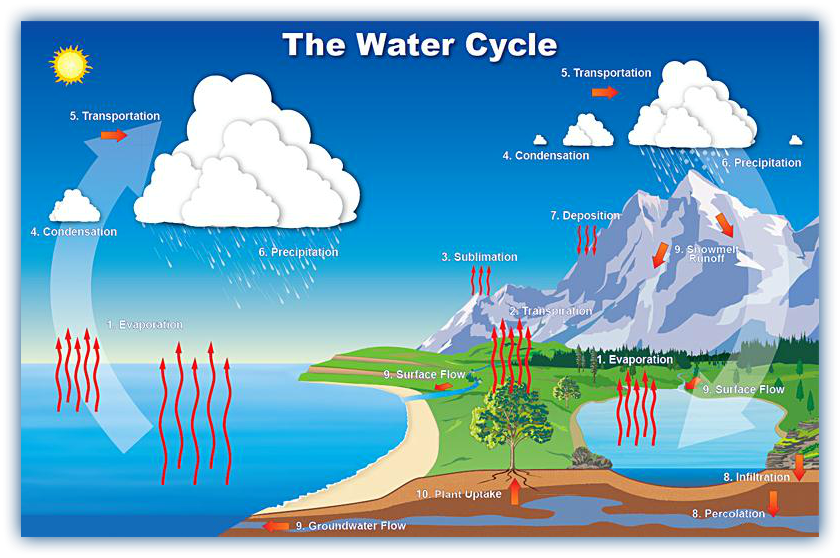 Water cycle complex diagram wiring library excellent water cycle activity on quizlet check out the link rh pinterest com what are the parts of the water cycle water cycle diagram label ccuart Gallery