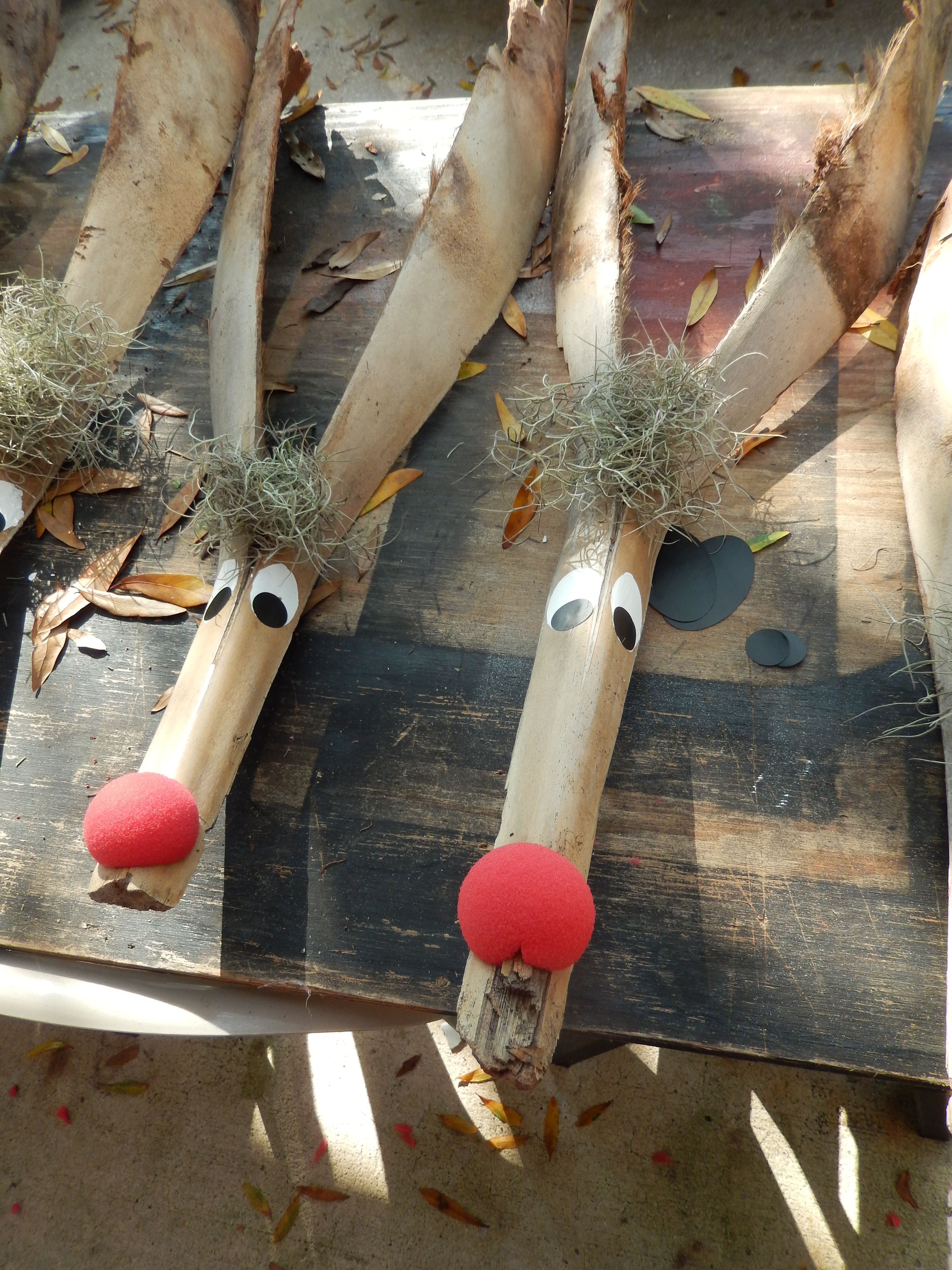 Palm Frond Reindeer  Use Spanish moss from trees, foam clown nose