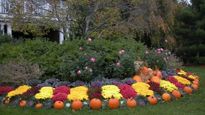 Fall Front Yard Landscaping Services In Bergen County Nj Fall