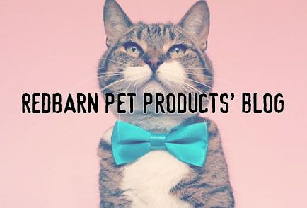 Premium Pet Products With As Much Character As Your Pet.