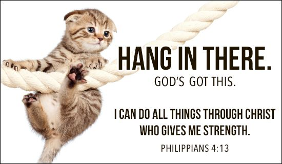 Hang In There Quotes Classy Free Hang In There Ecard  Email Free Personalized Care . 2017